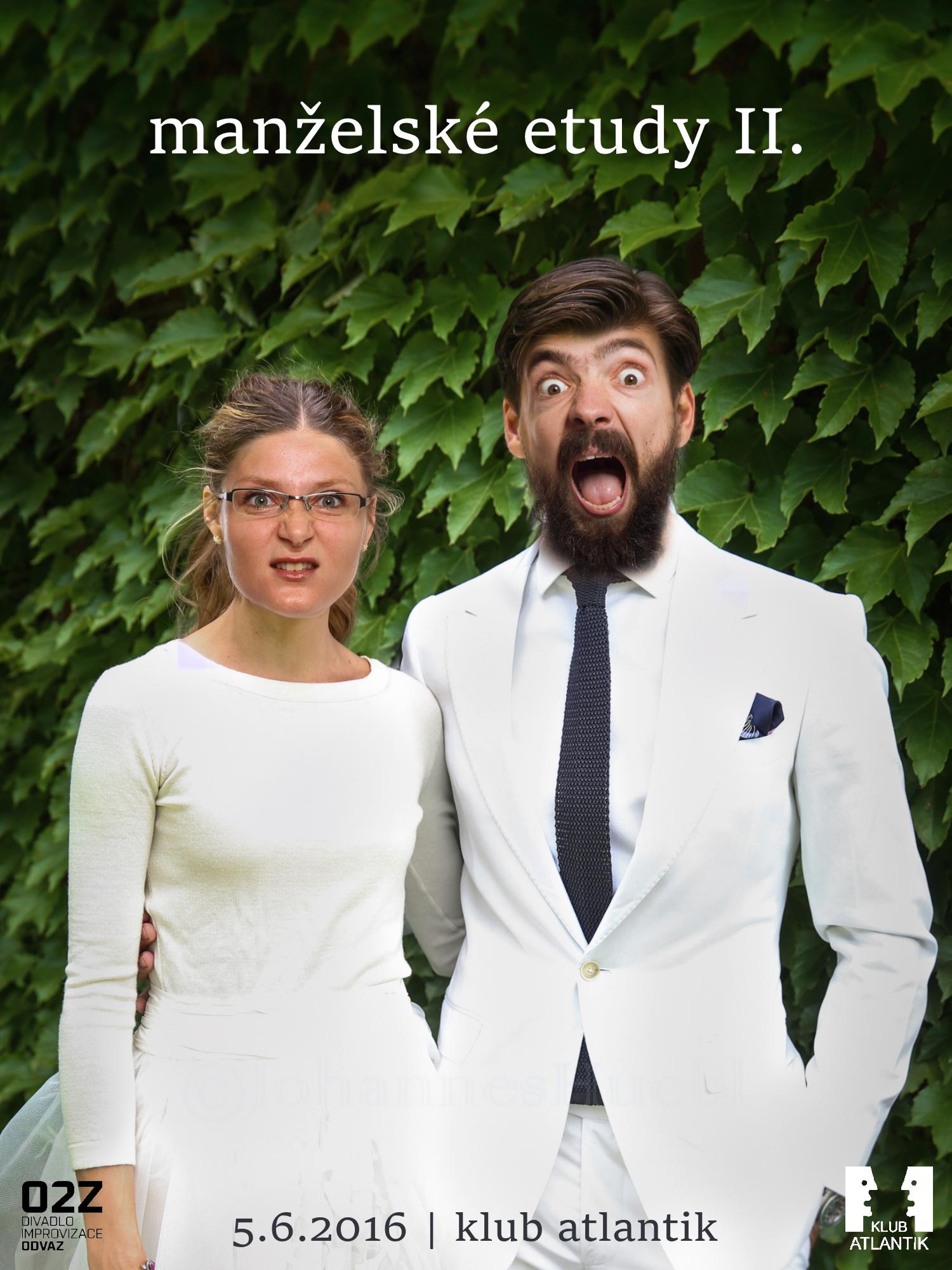 Manželské etudy II.